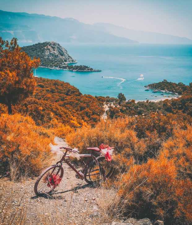 bike on the hill with body of water scenery