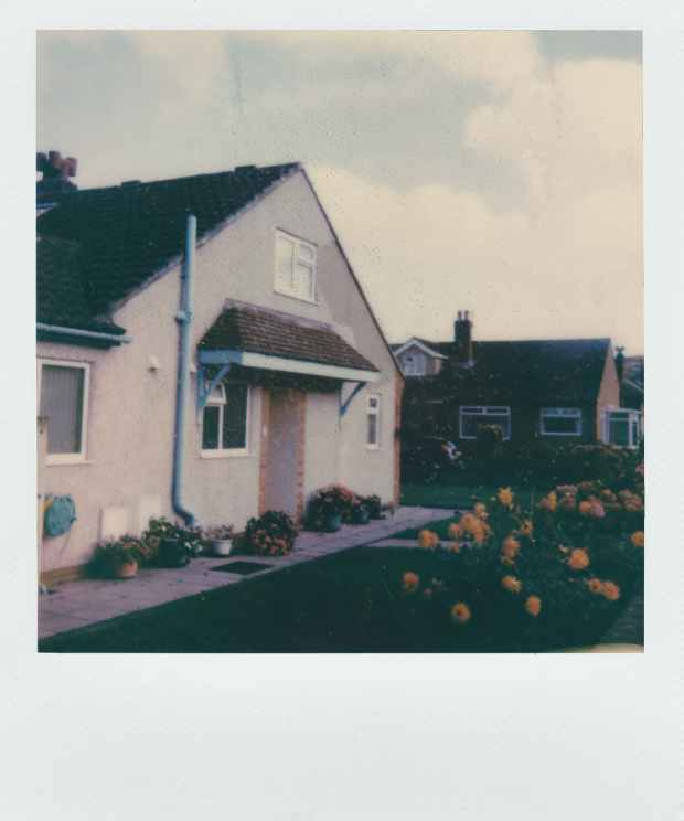 frontyard at the village